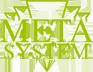 metasystem_logo